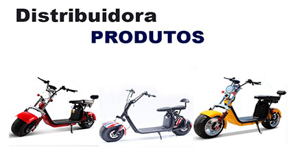 Representante Scooter E-Motors